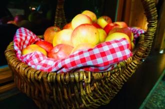 Rezepte, Apfel, einfach und lecker, backen, kochen, Familienessen