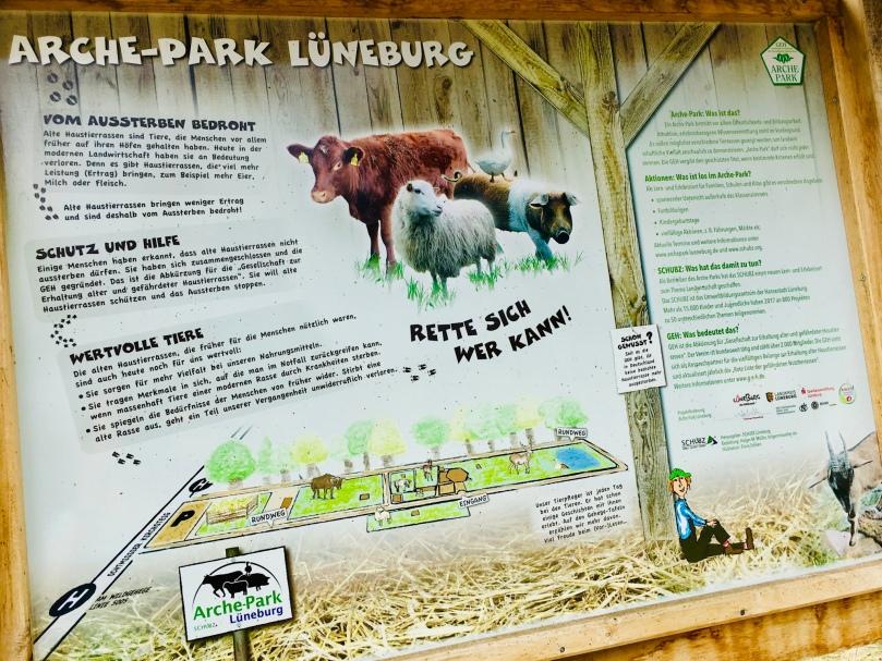 Lüneburg, unterwegs mit Kindern, Ausflugstipps, Unternehmungen, Familie